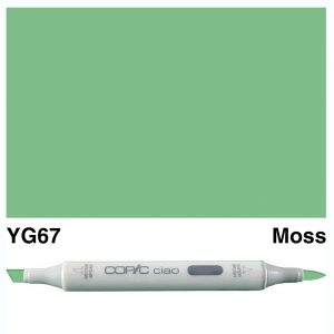 Copic Ciao YG67-Moss