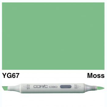Copic Ciao YG67-Moss