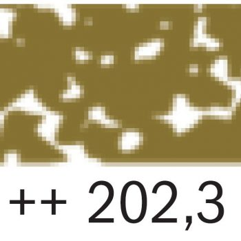 0006829_rembrandt-pastel-2023-deep-yellow-3