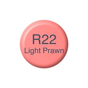 0031472_copic-ink-r22-light-praw