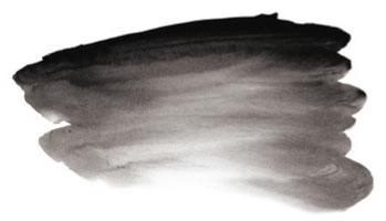 0004416_ai_carbon_black_s1_250ml