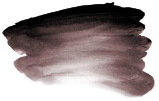 0011005_ai-brown-black-s1-500ml