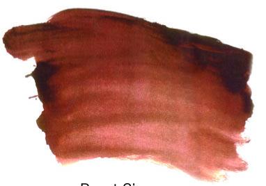 0011006_ai-burnt-sienna-s1-500ml