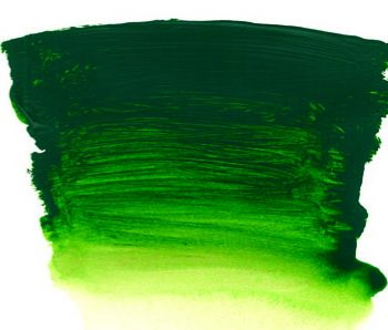 0011028_ai-forest-green-s2-500ml