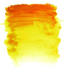 0011032_ai-indian-yellow-s2-500ml