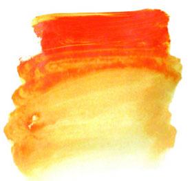 0011042_ai-orange-s2-500ml